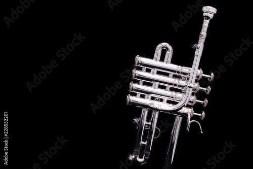 Fotografie, Obraz  A silver plated piccolo trumpet on a black background