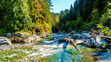 Fototapeta Las - The Coquihalla River before it flows through Coquihalla Canyon Provincial Park and past the Othello Tunnels of the old Kettle Valley Railway near the town of Hope, British Columbia, Canada