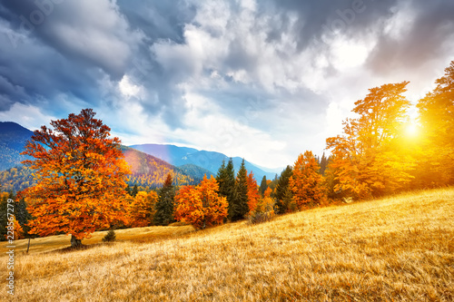 Photo Stands Melon Mountain autumn landscape with colorful forest