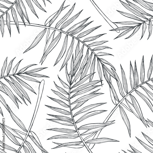 Vector vintage botanical seamless pattern with palm leaves in engraving style. Hand drawn texture with tropical plant branches isolated on white. Floral background. Sketch of natural element.
