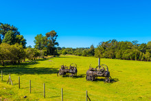Steam Engine On A Green Lawn, Puerto Varas, Chile. Copy Space For Text.