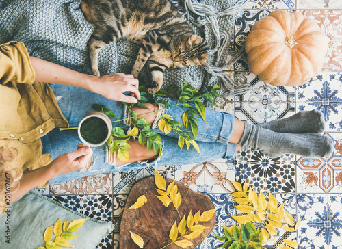 Obraz Autumn or Fall balcony tea time. Flat-lay of female sitting on colorful tiled floor and drinking herbal tea, cat, fallen leaves, warm blanket and pumpkin, top view. Autumn mood concept - fototapety do salonu