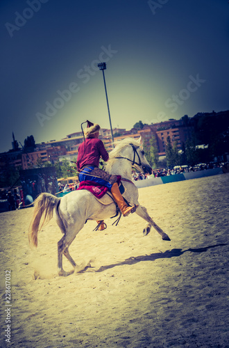 Ottoman horseman riding on his horse