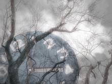 Collage Of Clock Face And Barren Trees With Foggy And Cloudy Weather In Winter On Plant Life And Seasons Change Concept