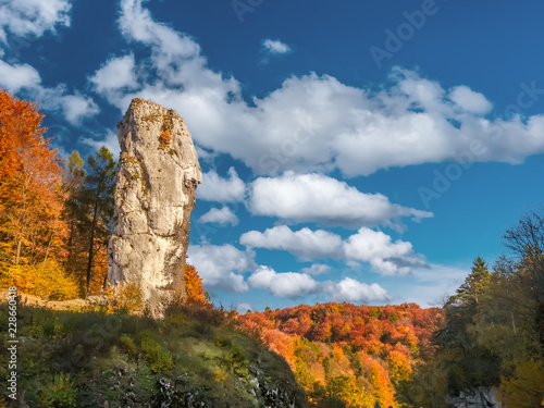 Limestone rock formation called Bludgeon of Hercules, Poland