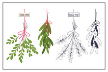 Hanging Mistletoe Branch With ...