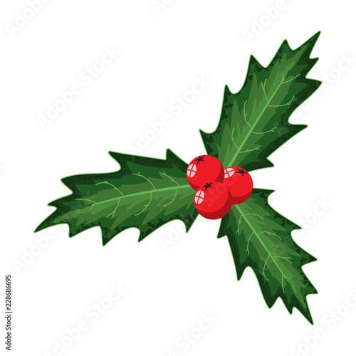 Christmas Holly Cartoon.Christmas Holly Berry Leaves Vector Cartoon Holiday