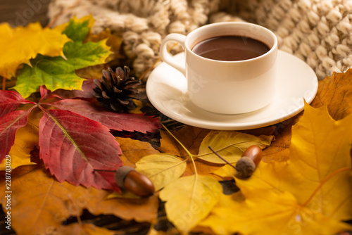 Fotografie, Obraz  Autumn, fall leaves, a hot cup of coffee and a warm scarf on the background of a wooden table