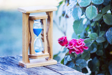 Sandy Clock Near Roses  Covered With Frost. Flowers In The Garden Fade. Time Is Running Fast, Everything Goes Away_