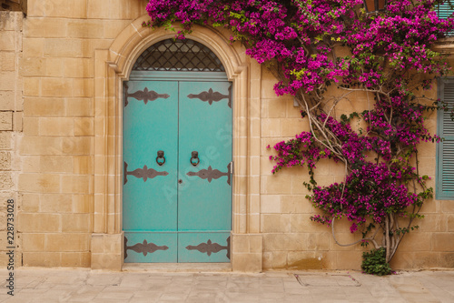 Tela Ancient maltese house with blue wooden door and pink bougainvillea in the wall