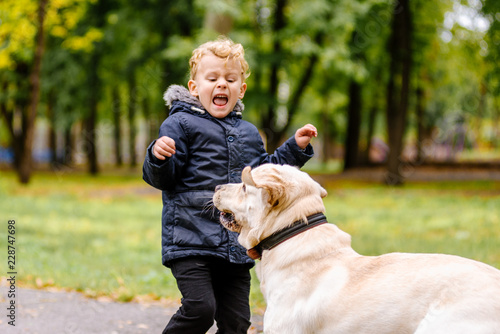 the child is afraid of the dog
