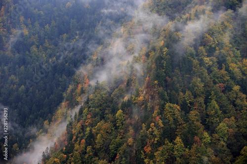 Obraz Jesień w Pieninach - fototapety do salonu
