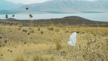 Plastic Bag Stuck On Branch Blowing In Wind With Lake And Mountain In Background