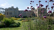 Breeze Stirs Tall Purple Flowers In The Foreground Of The Garden Audley End Mansion House In Saffron Walden, Essex, England