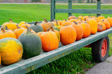 Roadside Farm Stand With Wagon Of Pumpkins In Variety Of Shapes, Sizes And Colors