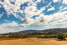 Vineyards And Farmland Along T...