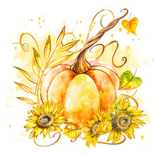 Pumpkin With Sunflowers. Hand Drawn Watercolor Painting On White Background. Watercolor Illustration With A Splash.