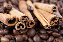 Twisted Cinnamon Bark