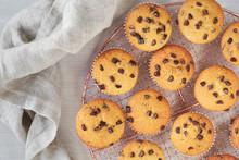 Twelve Freshly Baked Choco Chi...