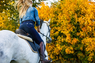 Woman riding a horse in park