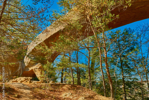 Sky Bridge Arch, Red River Gorge KY Wallpaper Mural