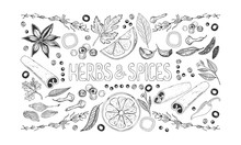 Herbs And Spices Background. Set Of Hand Drawn Spices, Herbs, Vegetables, Fruits And Lettering On White Background. Horizontal Vector Illustration.