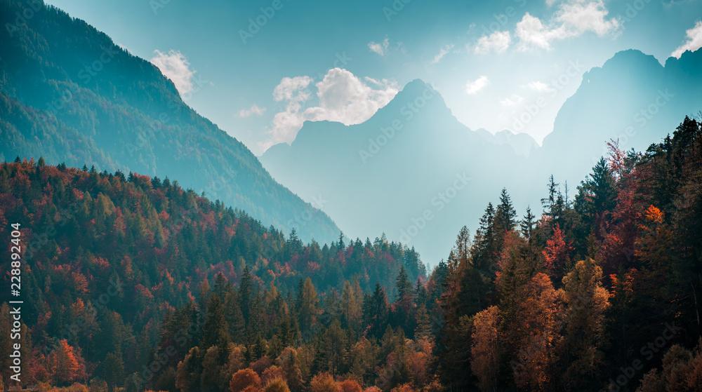 Fototapety, obrazy: Beautiful mountain landscape with autumn forest. Alpine scenery - Julian Alps