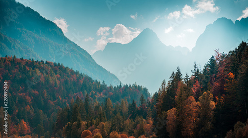Tuinposter Bergen Beautiful mountain landscape with autumn forest. Alpine scenery - Julian Alps