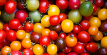 Different Colorful Cherry Tomatoes At Organic Farmers Market In Provence, France.