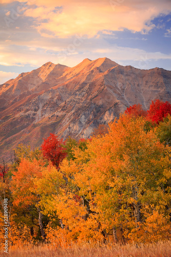 Tuinposter Purper Fall sunset in the Wasatch Front, Utah, USA.