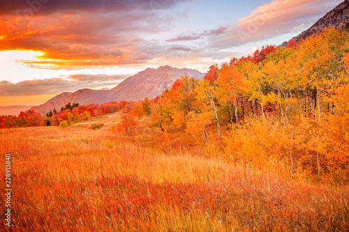 Poster Oranje eclat Fall sunset in the Wasatch Front, Utah, USA.