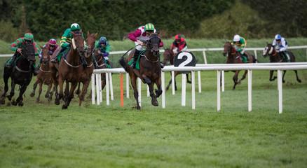 Horse racing panorama