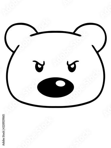 Fotografija  wütend böse gemein blick aggressiv gefährlich bär süß niedlich sitzen klein comi