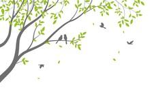 Beautiful Tree Branch With Bir...