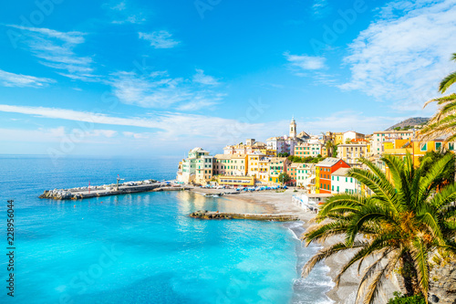 Photographie  View of Bogliasco