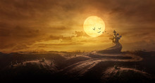 Halloween Background Through Stretched Road Grave To Castle Spooky In Night Of Full Moon And Bats Flying