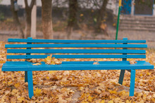 Blue Bench With Autumn Leaves