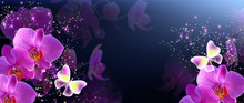 Butterflies With Orchids And G...