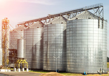 Complex For Storage Of Oilseed Rape And Other Grains, Agribusiness, Farming