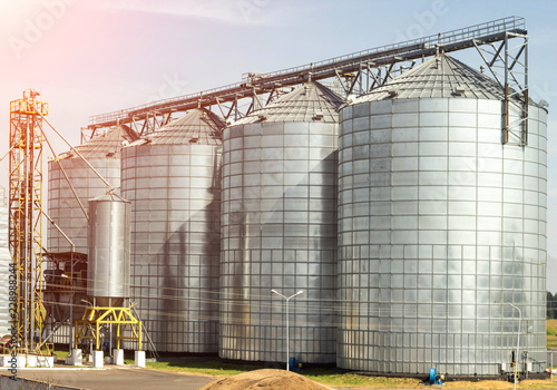 Obraz Complex for storage of oilseed rape and other grains, agribusiness, farming - fototapety do salonu