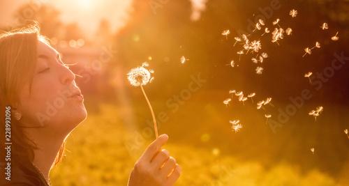 Obraz Junges Mädchen bläst Samen einer Pusteblume, Sonnenuntergang im Herbst mit Textfreiraum - fototapety do salonu
