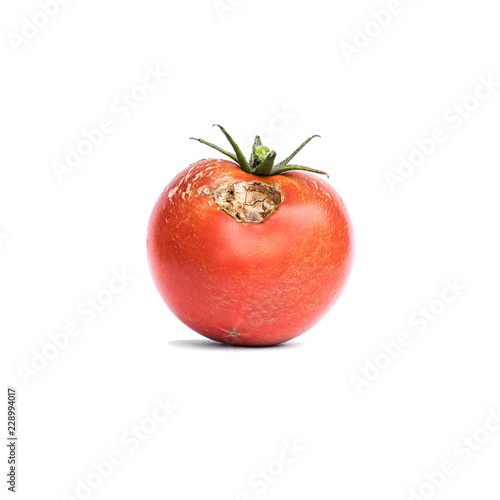 Tomato vegetable with a disease