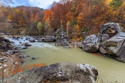 Staande foto Rivier mountain river