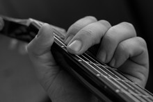 Male Hand Picks Up A Guitar Chord. Guitar Wrinkled Male Fingers Pinch The Strings On A Black Fingerboard. Black And White Photo Of Playing The Guitar.