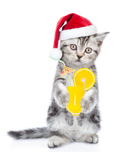Funny Cat In Red Christmas Hat With Tropic Cocktail Looking Up. Isolated On White Background