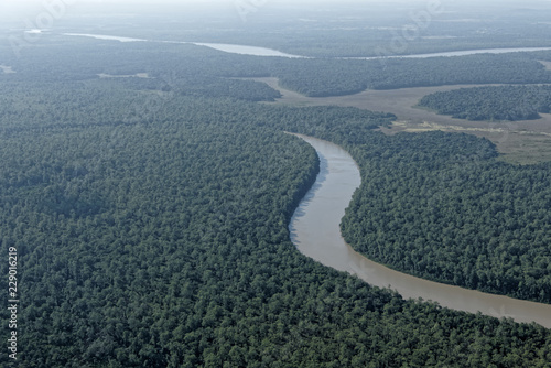Vue aérienne forêt et rivière Montsinéry en Guyane française. Canvas Print