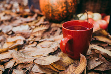 A Cup Of Tea In Autumn