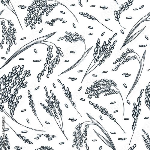 Carta da parati Rice cereal ears, vector seamless pattern