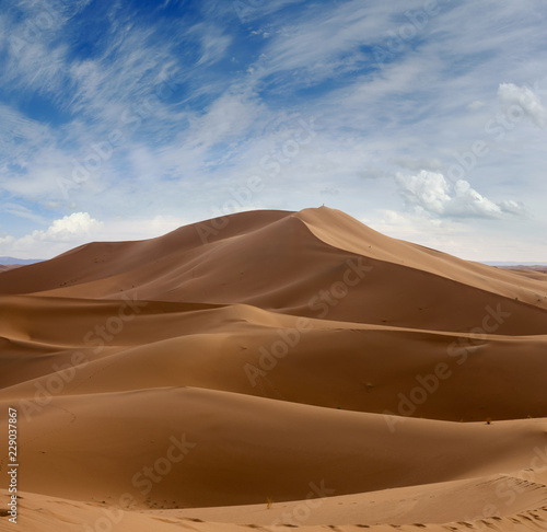 Foto op Canvas Zandwoestijn Big sand dunes in Sahara desert