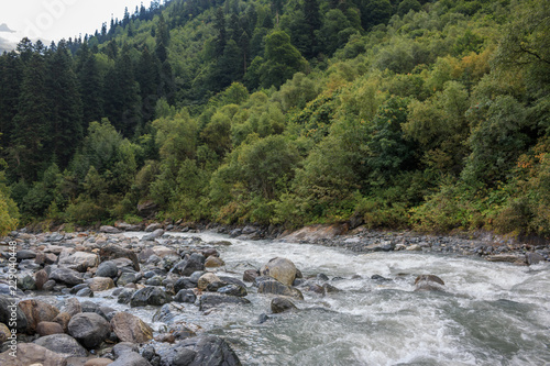 In de dag Rivier Closeup view river scenes in forest, national park Dombai, Caucasus, Russia, Europe. Summer landscape, sunshine weather, dramatic blue sky and sunny day